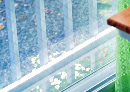 スズメさん来ていますよ 001ベランダにミニ花壇
