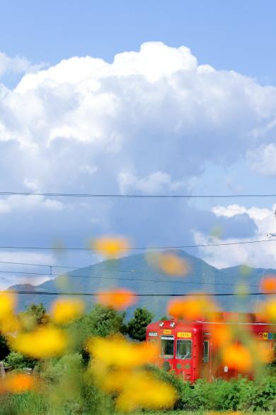 2015/8/22 和歌山電鐵貴志川線 甘露寺前~貴志