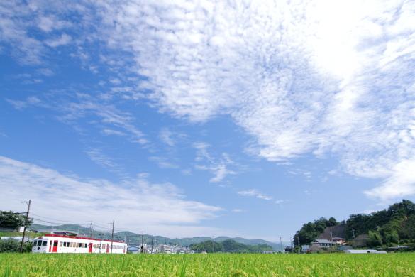 2015/9/12 和歌山電鐵貴志川線 大池遊園~西山口