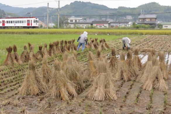 2008年10月 和歌山電鐵貴志川線 伊太祈曽