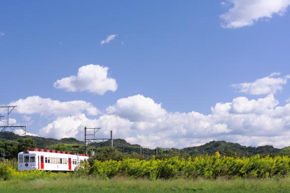 2009年10月 和歌山電鐵貴志川線 伊太祈曽~山東