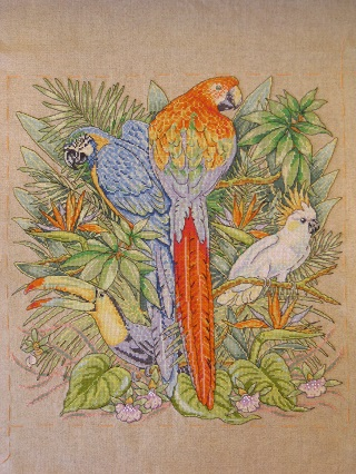 Birds of Paradise完成