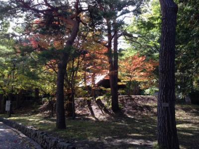 2015-10-10-6_convert_20151010133403.jpg