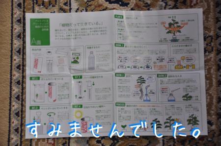 DSC_5811_convert_20151017174017.jpg