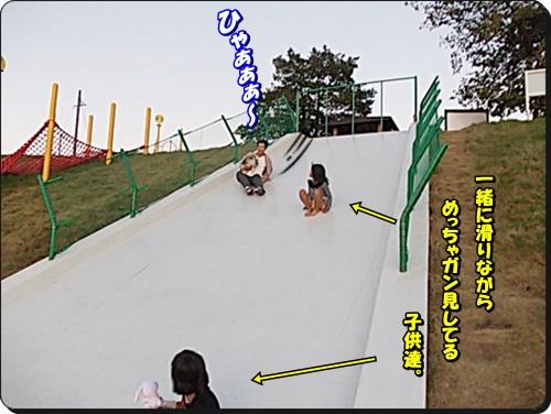DSCN8803.jpg