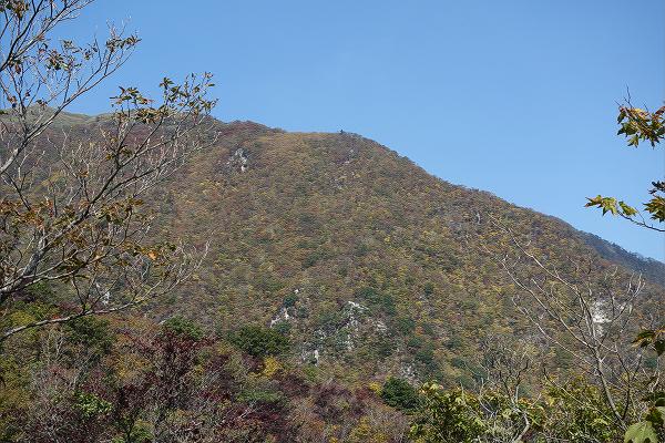 秋の竜ヶ岳