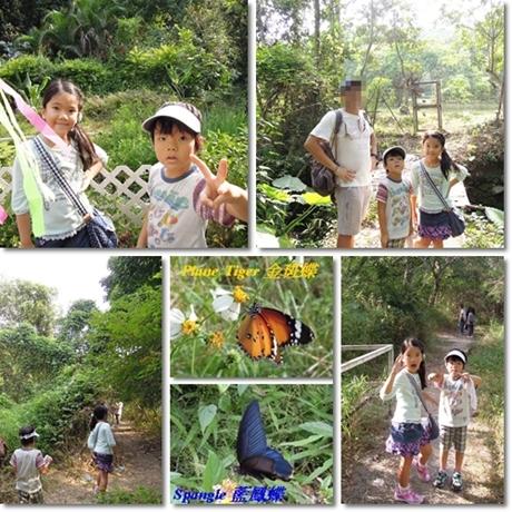 Butterfly Festival 4