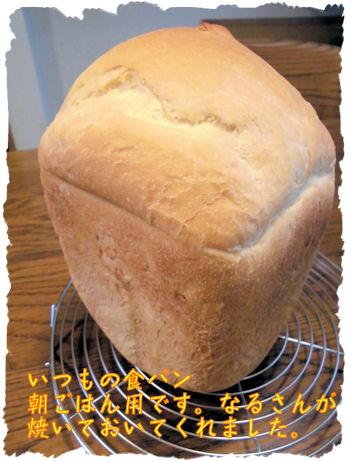 なる食パン