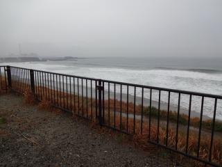 2014年11月29日 新港1