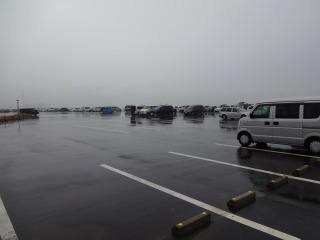 2014年11月29日 新港4