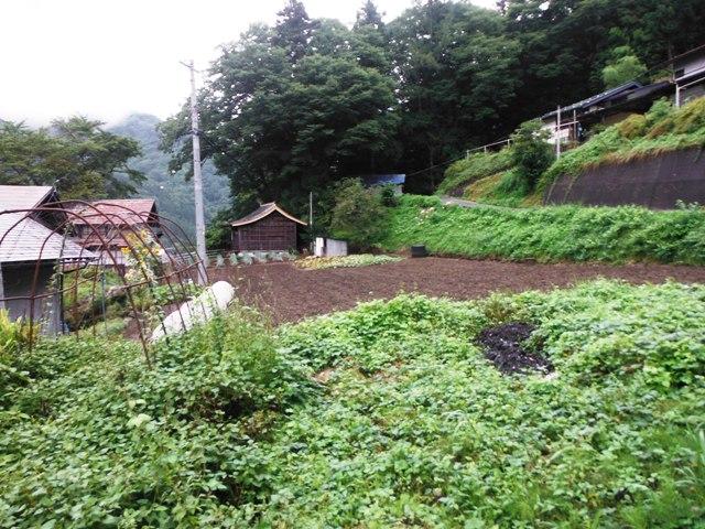 追通の栗田屋敷 (7)