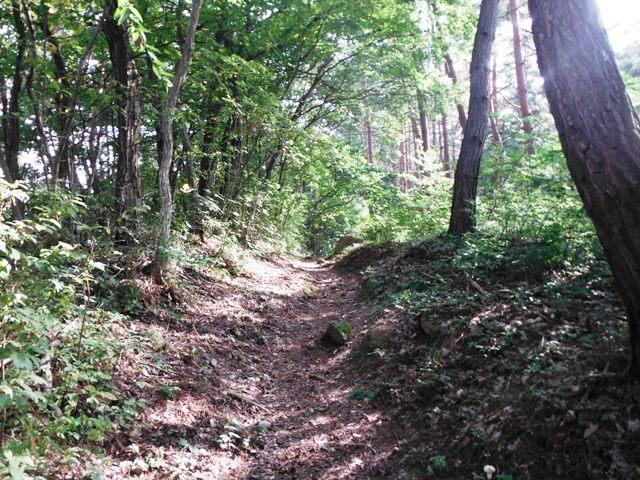 頼朝山砦 (12)