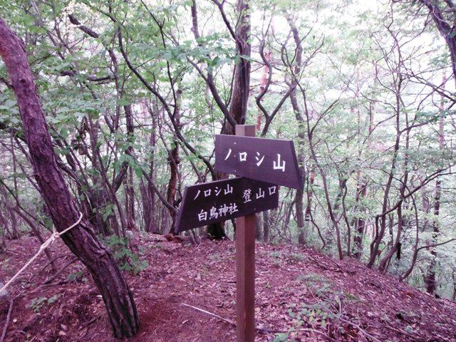 ノロシ山(長野市松代町) (20)