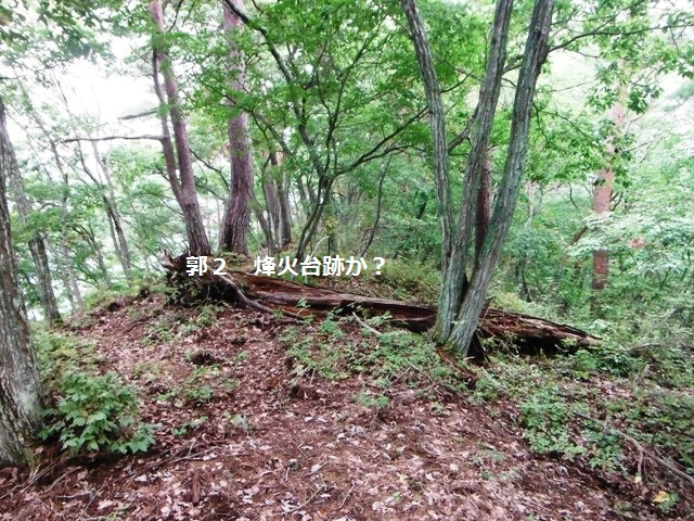 ノロシ山(長野市松代町) (75)