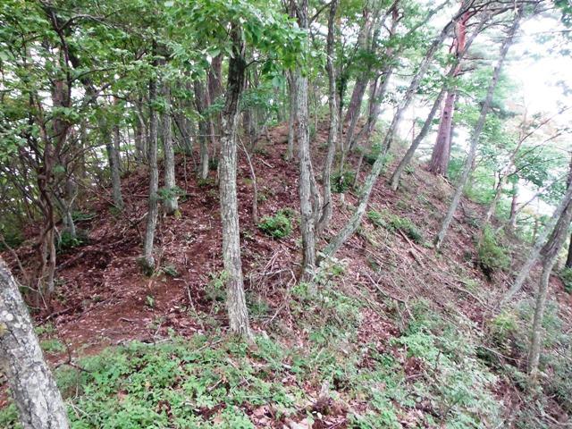 ノロシ山(長野市松代町) (63)