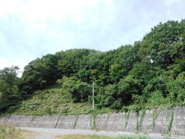 横壁城(長野原町) (75)