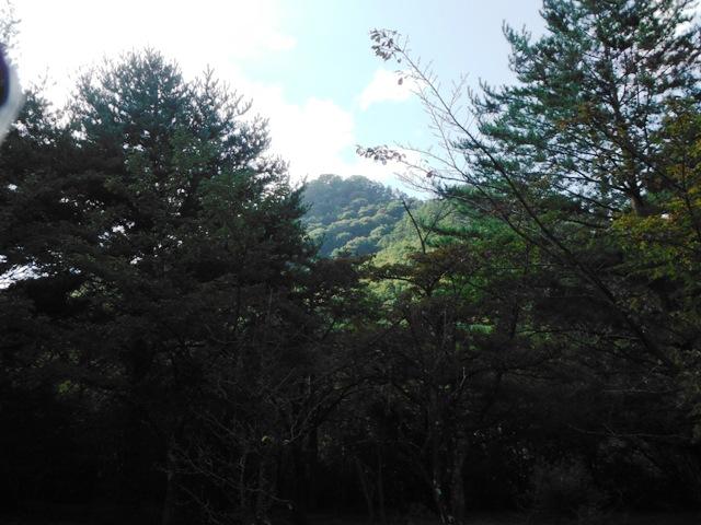 旭城(長野市平柴) (13)