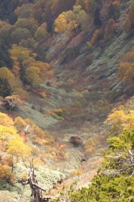 ミノブチ岳 (5)