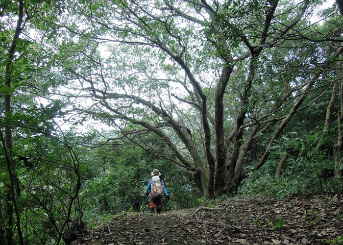 2015,9,12尺岳-12