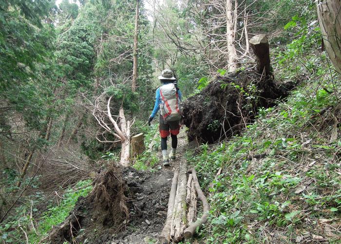 2015,9,12尺岳-4