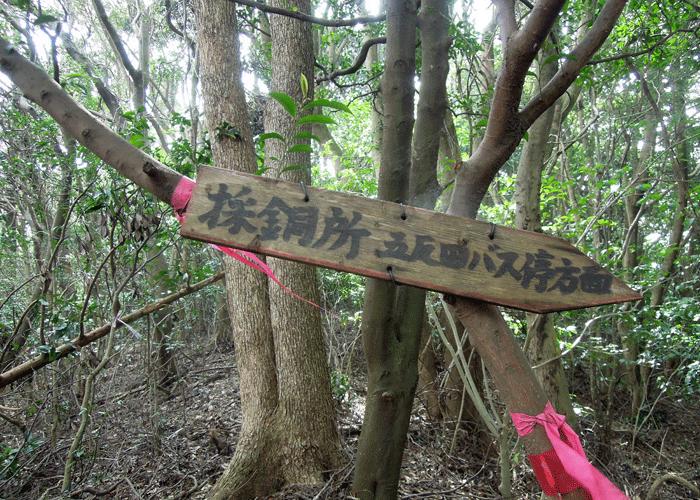 2015,9,22竜ヶ鼻-24