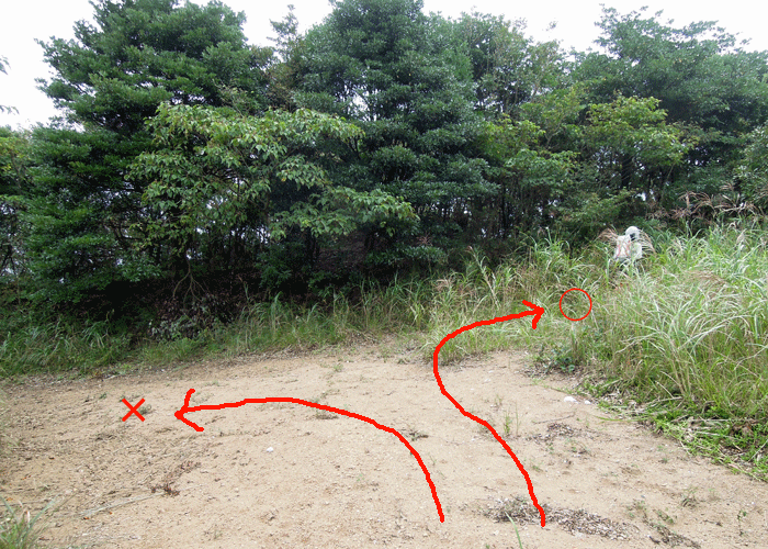 2015,9,22竜ヶ鼻-19