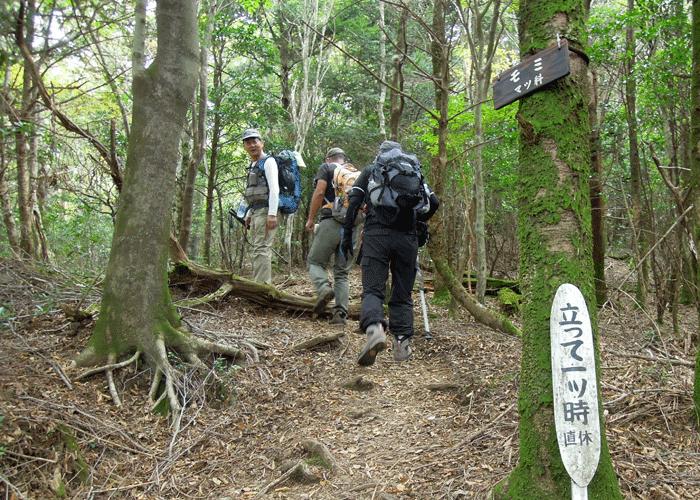 2015,10,11白髪岳-2