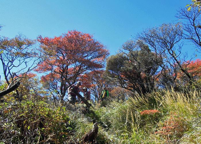 2015,10,17大船山-18