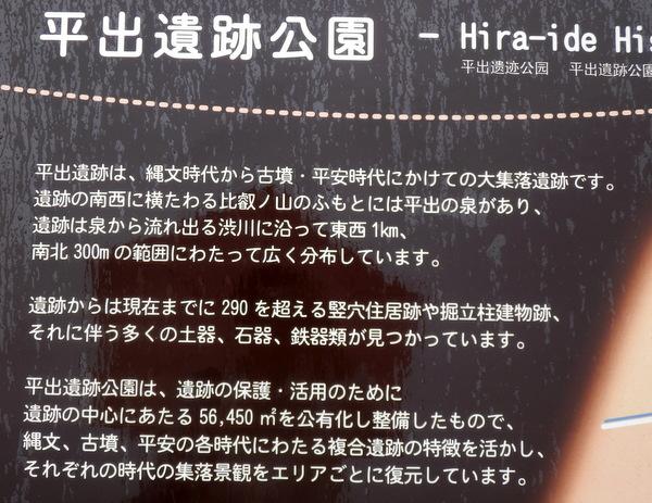 平出遺跡 (108)