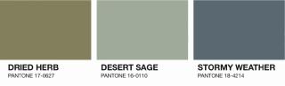 2015aw-pantone-colorreport02-03ss1.jpg