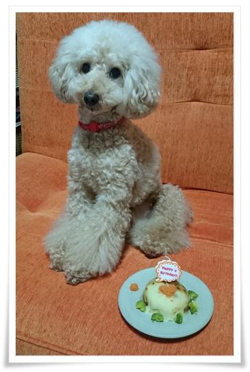 10歳の誕生日2