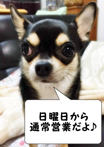 2015-09-10 ちまき ブログ用