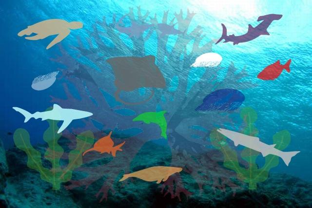 かわり文字 海底の魚