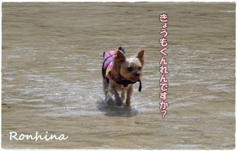 海へ!2015五島⑲