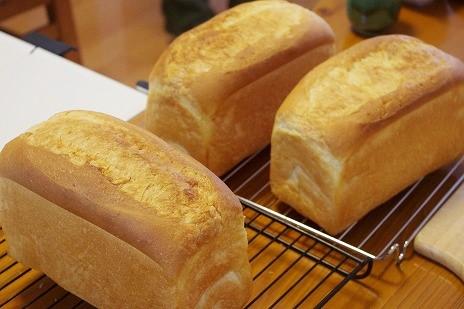 10月10日1斤型で、バタートップ食パン