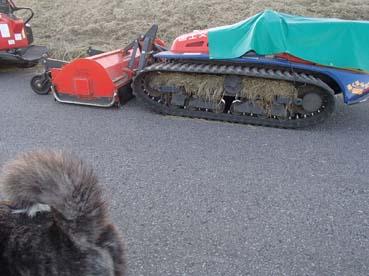 土手刈り1