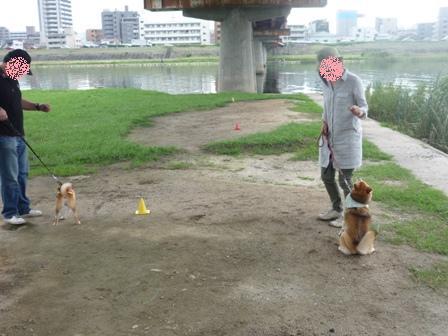 blog9771.jpg