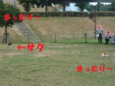 blog9812.jpg