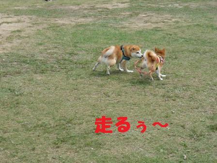 blog9815.jpg