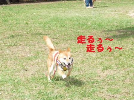 blog9818.jpg