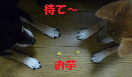 blog9853.jpg