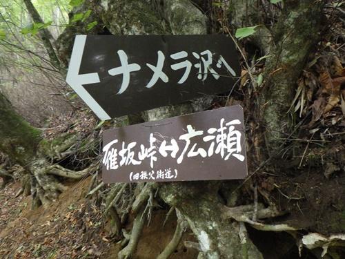 雁坂峠13