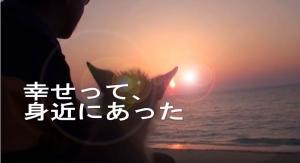 愛犬サンシンちゃん