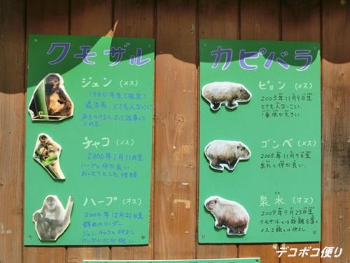 20150828 動物7