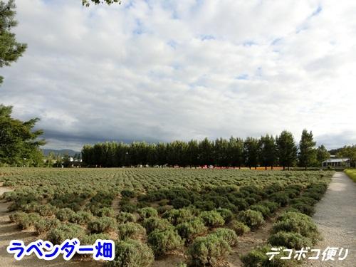 20150829 景色6