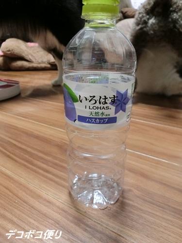 20150901 萌え7