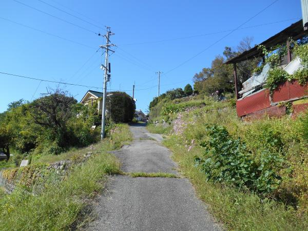 横根への道