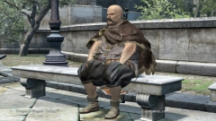 Dragons Dogma Online 0