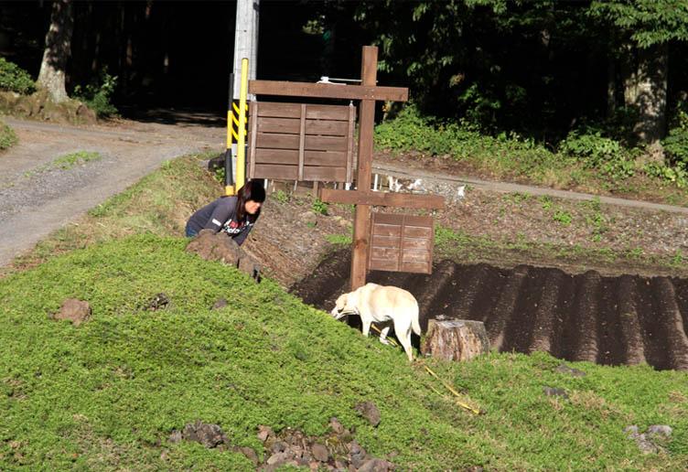浅間山系捜索犬の旅(50)
