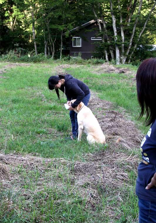 浅間山系捜索犬の旅(58)
